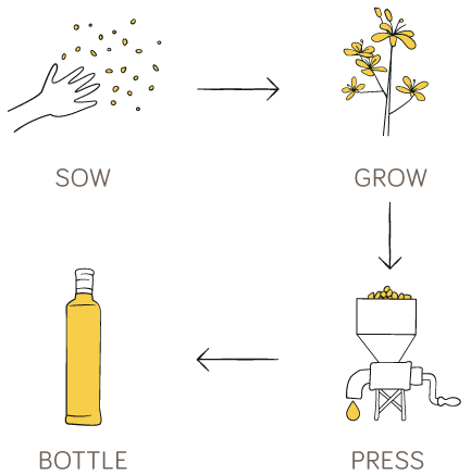 Sow, Grow, Press, Bottle